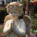 子供天使エンジェル置物、ピンク薔薇の花の冠を被って手を合わせてお祈りしている子供の天使、ガーデンエンジェルオブジェオーナメントhhdangel004